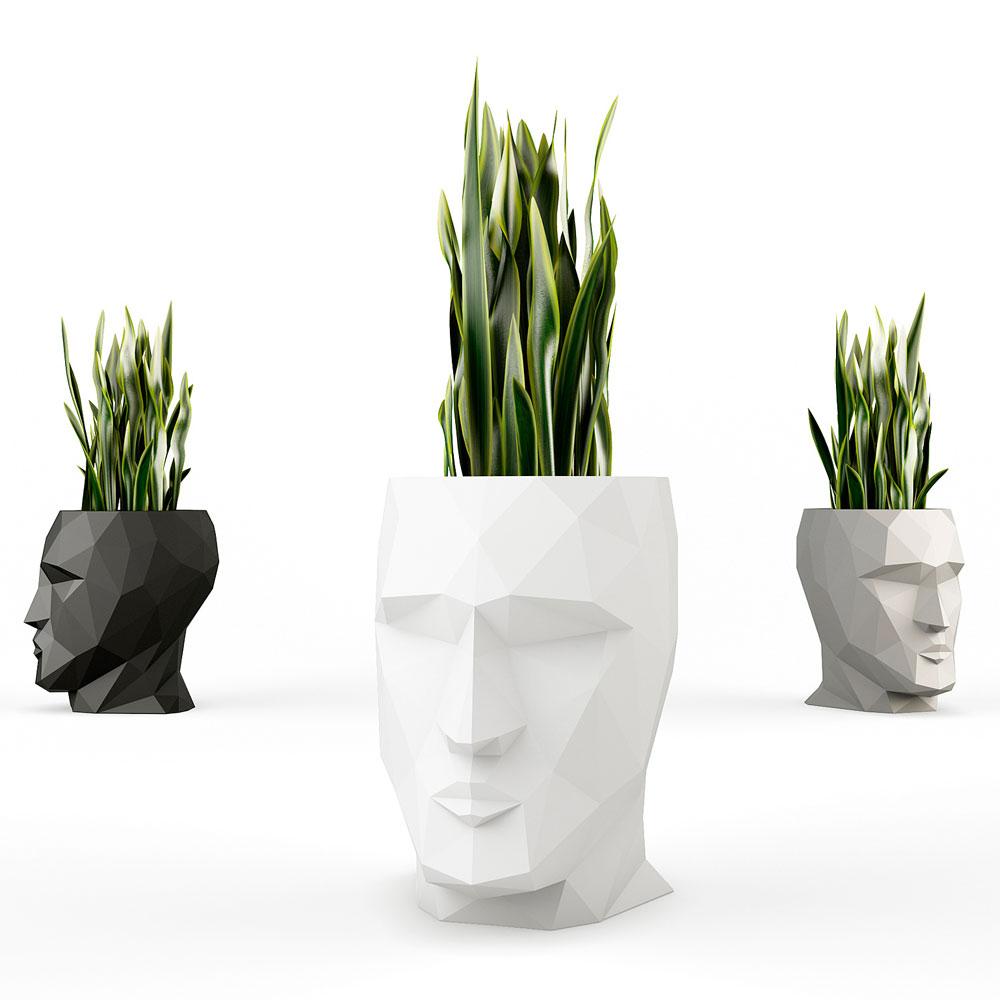 Những gợi ý làm mềm không gian nội thất bằng cây xanh